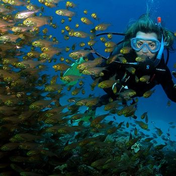 a female diver in red sea waters in taba sinai egypt